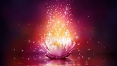 Sessão de Shamballa Healing - Cura Multidimensional